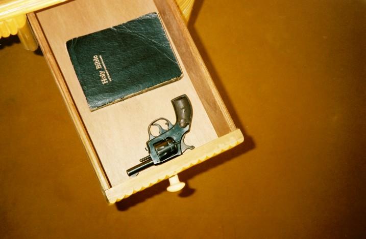 Gun n Bible