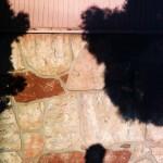 Shadow n treees