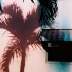 Palm Neon