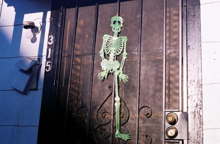 315 Skeleton