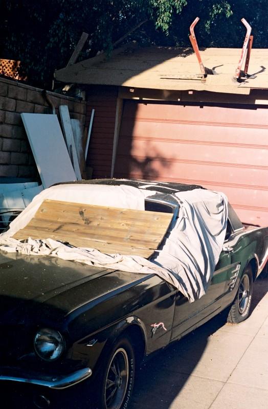 Abandones Mustang