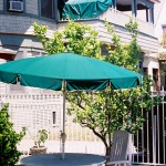 Green Umbrella Green Tarp