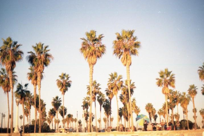 Mission Beach (4)