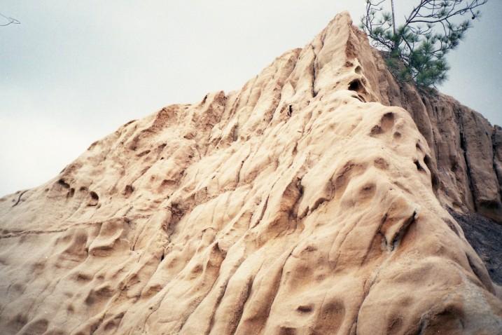 Torrey Pines Hike (9)