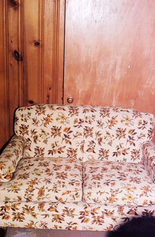 Basement Sofa 2