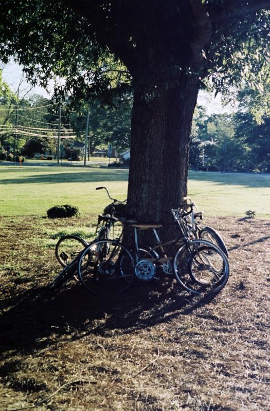 Bike Trunk 2